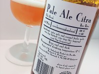 Birrificio De Molen – Pale Ale Citra