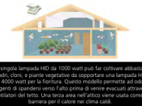 A proposito di grow rooms