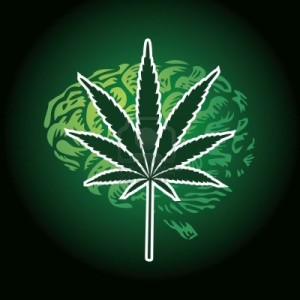 12453442-cannabis-leaf-and-human-brain-background-illustration