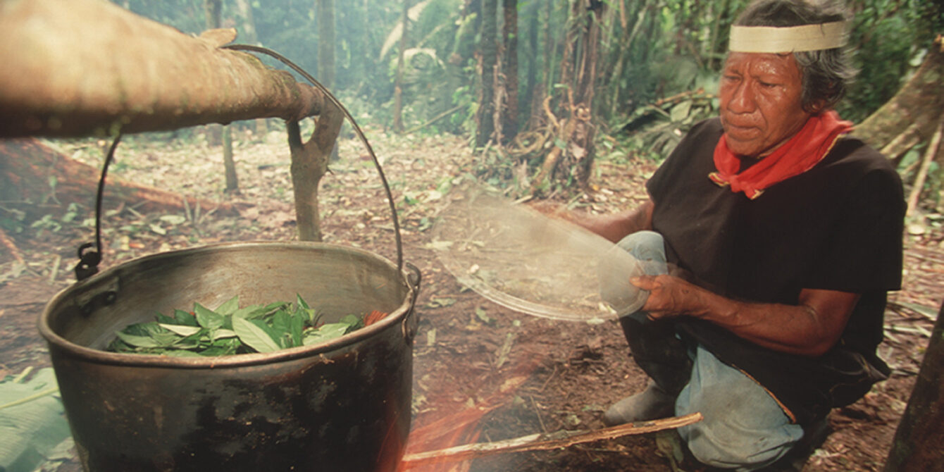 A shaman in the Coafan region boils leaves for their psychoactive proporties as used in ayahuasca, Ecuador, 2009. (Photo by Wade Davis/Getty Images)