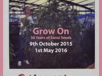 """Grow-On: 30 anni di Sensi Seeds"" la nuova mostra temporanea di Sensi Seeds"