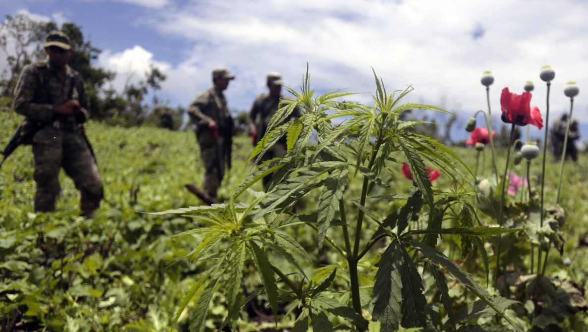 war on drugs colombia