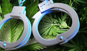 cannabis-galera-repressione-war-on-drugs