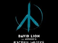 Peaceful Warrior è il nuovo singolo di David Lion