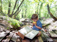 Boy reading a book on nature; Shutterstock ID 266629379; Client/Licensee: -