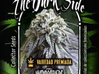 Strain Guide: The Dark Side