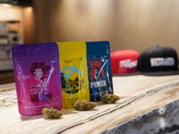La cannabis light di Cbweed arriva nei coffee shop di Amsterdam!